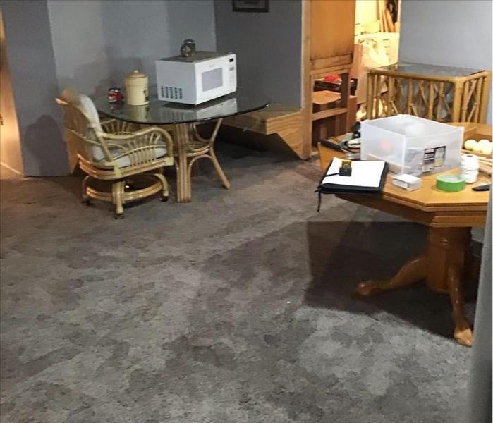 Sump pump failure affected a finished basement with carpeting