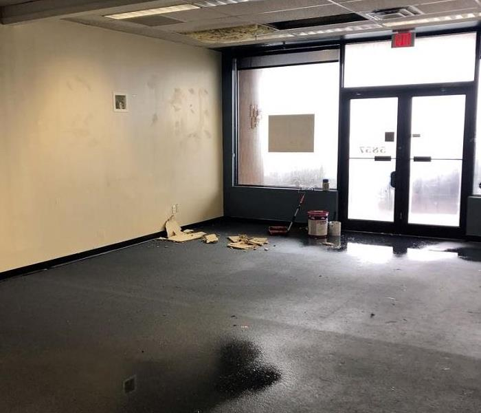 Photo is showing standing water on a carpet and wet insulation hanging from the ceiling